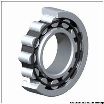 60 mm x 130 mm x 31 mm  NKE NUP312-E-M6 cylindrical roller bearings