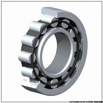 105 mm x 190 mm x 36 mm  NACHI NF 221 cylindrical roller bearings