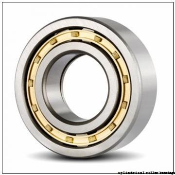 85 mm x 180 mm x 41 mm  NSK NU 317 EM cylindrical roller bearings