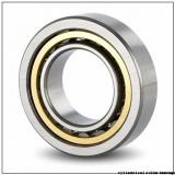 45 mm x 100 mm x 31 mm  Fersa F19063 cylindrical roller bearings