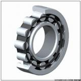 55 mm x 100 mm x 21 mm  Fersa NUP211FM/C3 cylindrical roller bearings