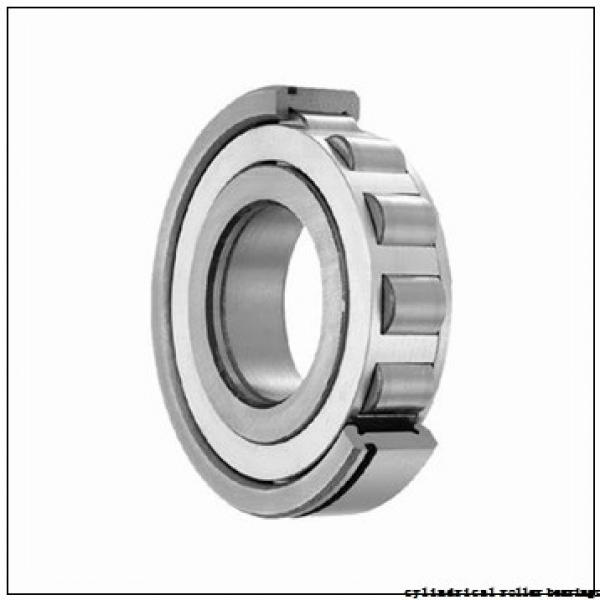 40 mm x 80 mm x 18 mm  FBJ NUP208 cylindrical roller bearings #1 image