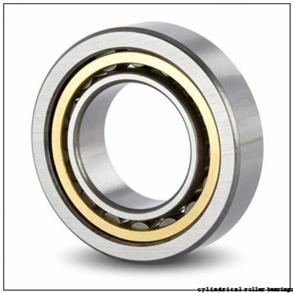 95 mm x 170 mm x 32 mm  FBJ NUP219 cylindrical roller bearings #1 image