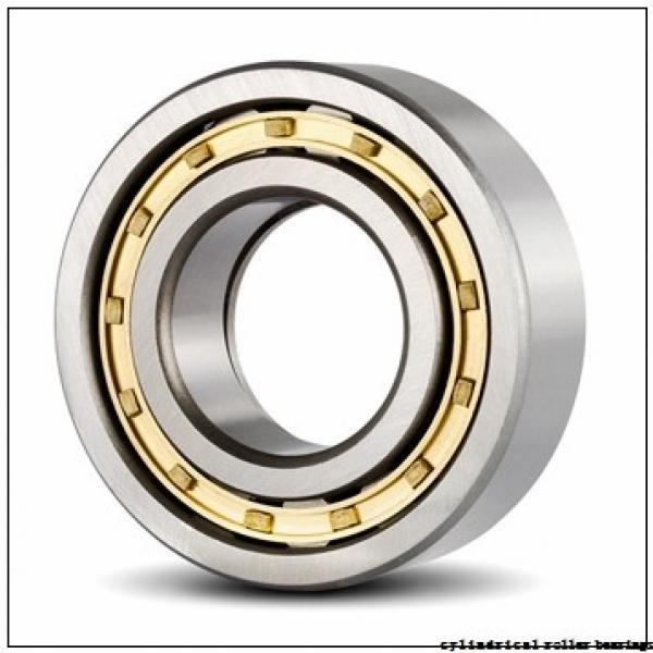 45 mm x 85 mm x 19 mm  Fersa NU209FMN cylindrical roller bearings #1 image